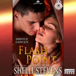 Flash Point Audio Book