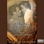Strong Silent Type Audiobook