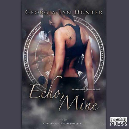 Echo Mine Audiobook