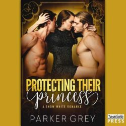 Protecting Their Princess Audiobook