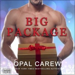 Big Package Audiobook