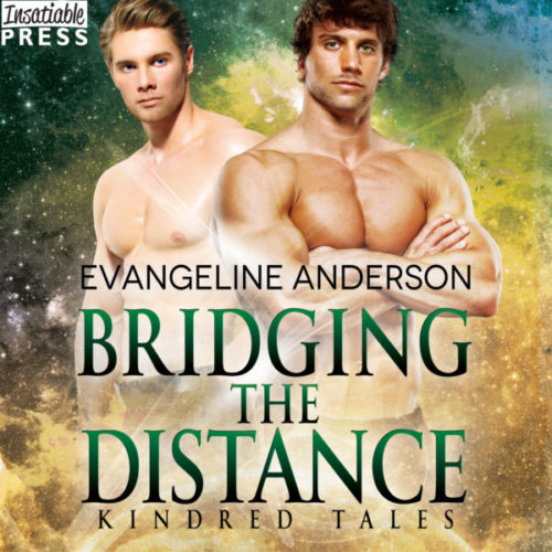 Bridging the Distance Audiobook