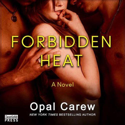 Forbidden Heat Audiobook
