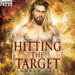 Hitting the Target audiobook