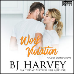 Work Violation Audiobook